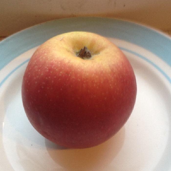 Яблоко подарок графскому 53